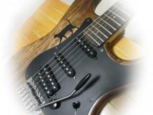 ギター、ネコ、猫